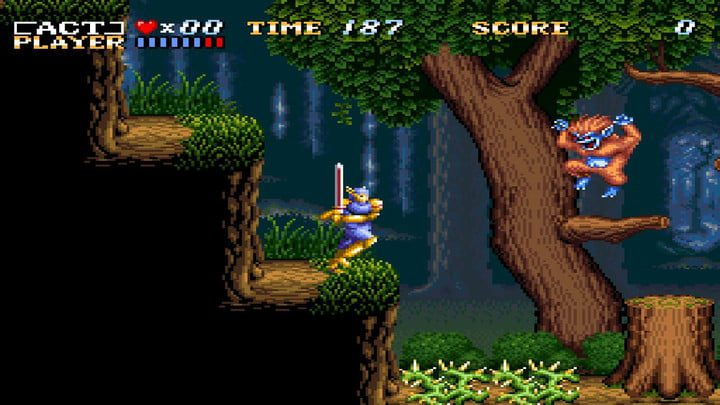 The main character jumps in ActRaiser.